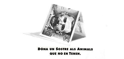 Nou refugi d'animals abandonats